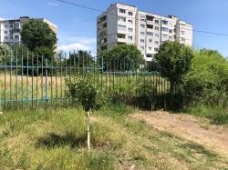 Properties in Complex Sofia